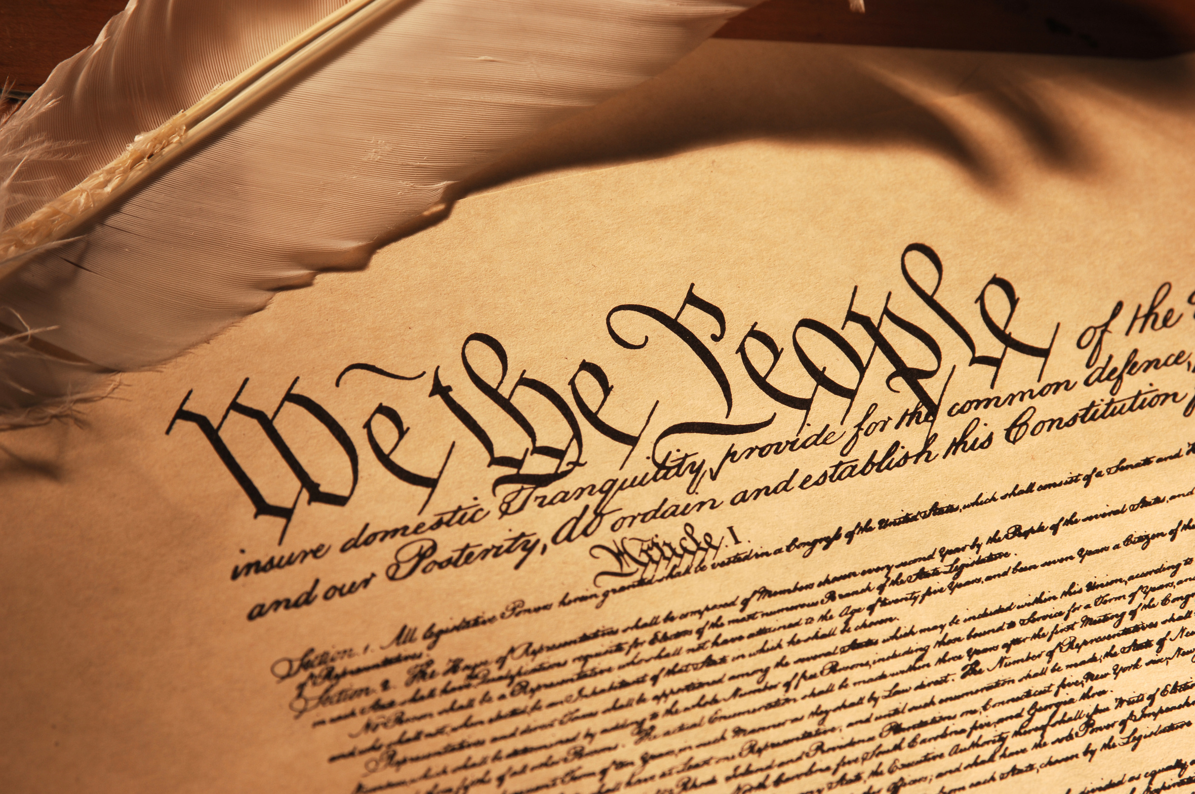 essay about the constitution of the united